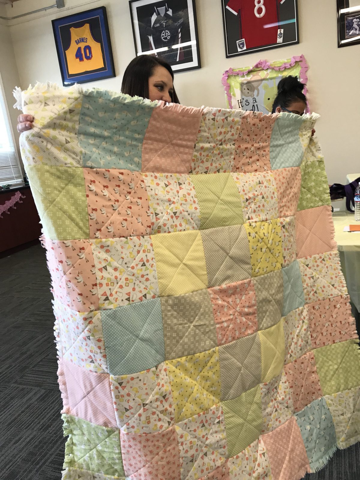 Quilt Diary: April One Monthly Goal Finish